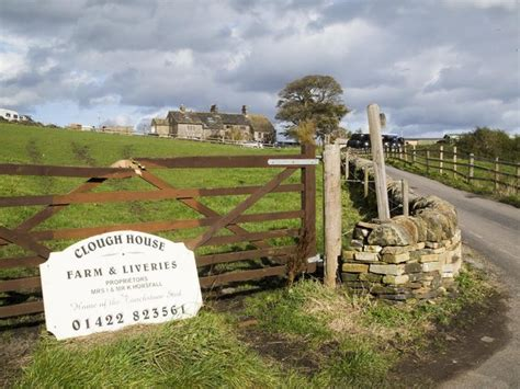 Calderdale farm awaiting results after 18 horses died